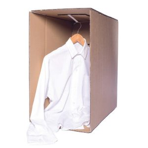 Carton box with an elastic hanger