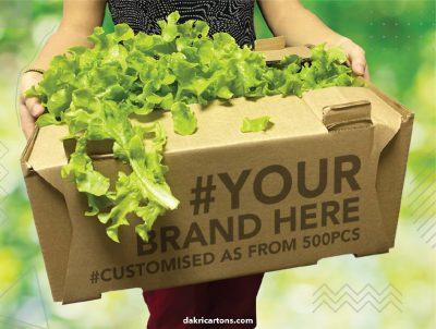 Fruit and Veg tray - Dakri Cartons